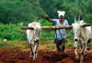 कृषि दर्शन में किसानों की समस्याओं का निदान