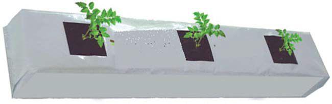 ग्रो बैग में छत पर उगाएं सब्जियां