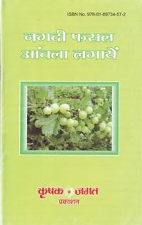 nagdi-phasal-amwala-min