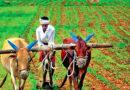खेत पाठशाला में नई तकनीक मिली किसानों को