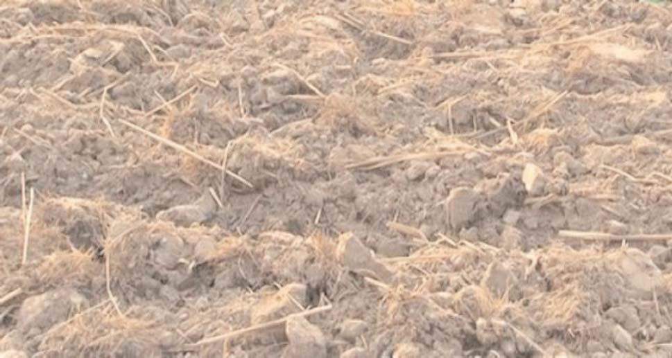 फसलों का कचरा बढ़ाए मिट्टी का जीवन