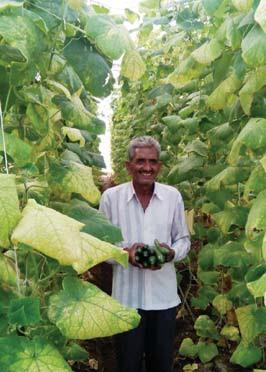 पॉली हाउस से सलामत है रामप्रसाद की खेती
