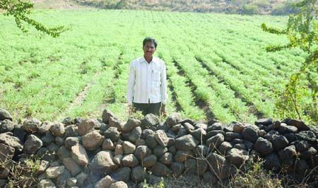 काश्तकारों ने मेढ़बंधी कर फसल का उत्पादन किया तिगुना