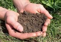 मिट्टी स्वास्थ्य कहीं और न बिगड़े