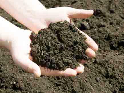 स्वस्थ मिट्टी परीक्षण हेतु मिट्टी परीक्षण आवश्यक मिट्टी परीक्षण