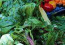 सब्जी की खेती से किसान बने लखपति