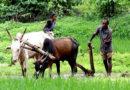 मुख्यमंत्री कृषक सहायता योजना राशि बढ़ी