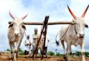 जैविक या जीरो सरकार बताएं कौन सी खेती करे किसान ?