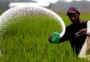 1 जून से किसान को आधार कार्ड पर मिलेगी खाद