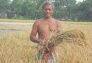 किसान की लंगोटी उतारने में जुटे अर्थशास्त्री