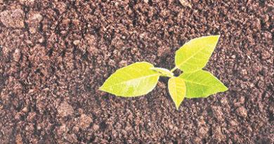 सहेजें मिट्टी एवं पर्यावरण