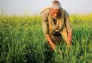 कृषि आय पर कर कृत्रिम कृषकों से ही वसूल हो