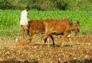 किसान ही दण्डित क्यों ?