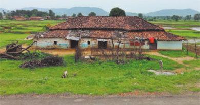 बढ़ती आत्मनिर्भरता से ही बचेंगे गाँव