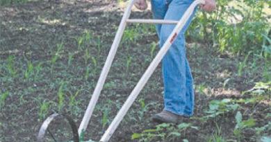 कृषि यंत्रों से बचेगा श्रम और समय : डॉ. मिश्रा