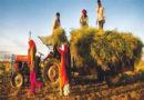 किसान हितैषी बजट में लागत गणना का पेंच ?