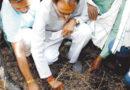 प्रदेश में 984 गांव पर ओलों की मार