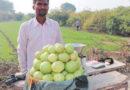 खेती को बनाया लाभ का व्यवसाय