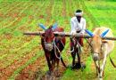 खेती के साथ पशुपालन भी अपनायें किसान