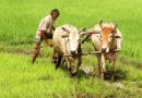 कृषि का गौरव बहाल करने की जिद में किसान पुत्र