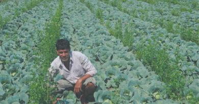 किशोर बने किसानों के लिए प्रेरणा स्त्रोत