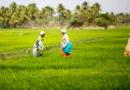 किसानों को समृद्ध करने सरकारी कवायद
