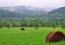 जरूरी है समृद्ध कृषि व्यवसाय का संवर्धन