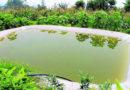 खेती की आधुनिक तकनीक जल प्रबंधन