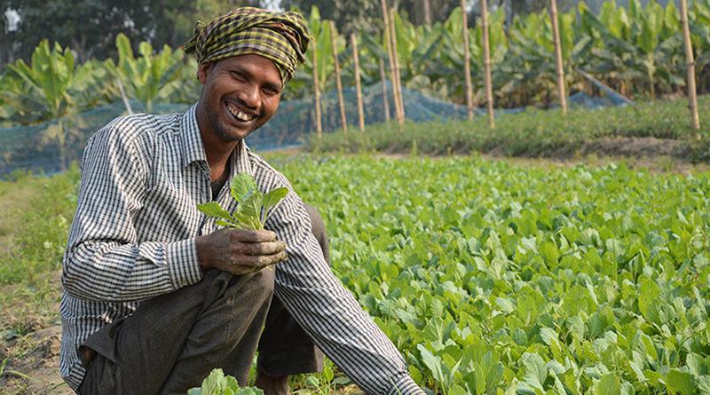 पीएम किसान योजना में अब 30 नवम्बर तक जोड़ सकेंगे बैंक खाते से आधार संख्या