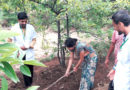 छात्रों ने सीखे फसलों की उन्नत खेती के गुर