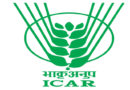 icar-awards-2019