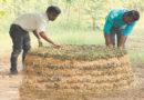 shivana-compost