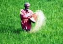 यूरिया संकट से जूझ रहे किसान
