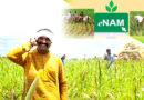देश के 1 करोड़ 62 लाख किसान ई- नाम से जुड़े