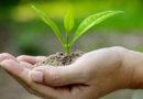 जीवन की गुणवत्ता बढ़ाती जैविक खेती
