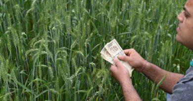 मध्य प्रदेश : मुख्यमंत्री श्री चौहान ने 15 लाख किसानों को ऑनलाइन दिये फसल बीमा के 2981.24 करोड़
