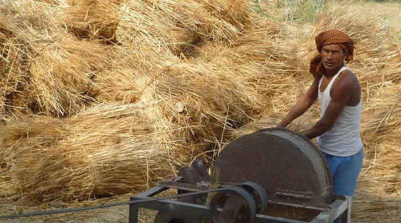 मध्य प्रदेश के किसानों के साथ न्याय करेगी राज्य सरकार- मंत्री श्री पटेल