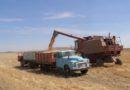 छत्तीसगढ़ में 44 हजार हेक्टेयर में बीज उत्पादन की योजना