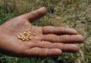 उपज का सही मूल्य मिले, तभी सौदा पत्रक पर सहमति दें किसान