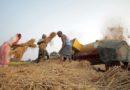 लॉकडाउन अवधि में भी तेजी से चल रही कृषि गतिविधियां
