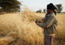 मध्य प्रदेश: उपार्जन राशि से बैंकों दवारा बक़ाया ऋण का 50 प्रतिशत से अधिक न काटा जाए