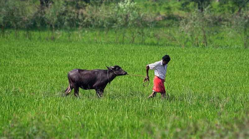 धमतरी : कृषि आदान दुकानों को छूट