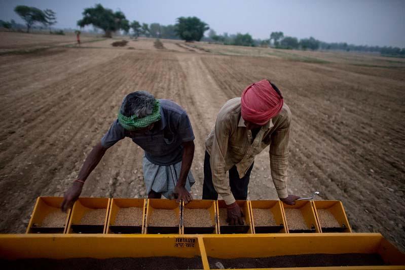 172 टन खाद एवं 85 क्विंटल बीज वितरित: अम्बिकापुर