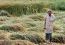 लॉक डाउन किसानों पर भारी