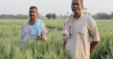 मध्य प्रदेश: गेहूँ खरीदी केन्द्रों पर कोरोना से सुरक्षा व्यवस्थाओं से खुश हैं किसान