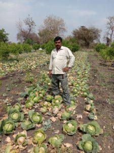लॉक डाऊन ने किया सब्जी- फल उत्पादकों का लाखों का नुकसान