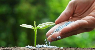 छत्तीसगढ़ : खाद बीज का अग्रिम उठाव करें सुनिश्चित-कलेक्टर
