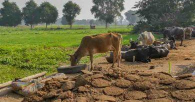 किसानों को कृषि वैज्ञानिकों की सामयिक सलाह: रायपुर