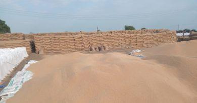 किसानों को एमएसपी पर गेहूँ ख़रीदी के 4629 करोड़ का भुगतान हुआ: मध्य प्रदेश