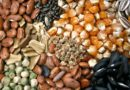खाद बीज दुकानें 7 मई से प्रतिबंध से मुक्त रहेगी